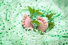 Piccoli piedi di neonato Fotografia Stock