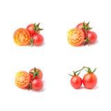 Piccoli pomodori Fotografie Stock