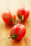 Piccoli pomodori Fotografia Stock