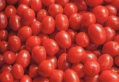 Piccoli pomodori ciliegia maturi rossi freschi organici sul mercato il giorno soleggiato Fotografia Stock Libera da Diritti