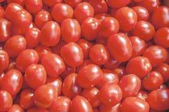 Piccoli pomodori ciliegia maturi rossi freschi organici sul mercato il giorno soleggiato Fotografia Stock