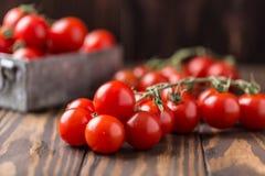 Piccoli pomodori ciliegia rossi su fondo rustico Pomodori di ciliegia sulla vite Fotografie Stock Libere da Diritti