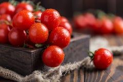 Piccoli pomodori ciliegia rossi su fondo rustico Pomodori di ciliegia sulla vite Immagini Stock Libere da Diritti