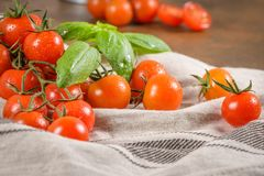 Piccoli pomodori di ciliegia rossi Fotografia Stock Libera da Diritti