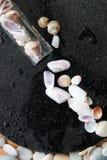 Piccoli Seashells Immagini Stock Libere da Diritti