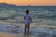 Piccoli supporti e sguardi eleganti al tramonto immagini stock libere da diritti
