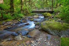 Piccoli torrente montano e ponte Immagini Stock Libere da Diritti