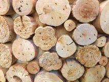 Piccoli tronchi di legno naturale fotografia stock