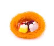 Piccoli uccelli di colore in nido Fotografia Stock