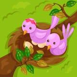 Piccoli uccelli svegli con il nido sul ramo Fotografia Stock Libera da Diritti