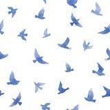 Piccoli uccelli svegli Modello senza cuciture per progettazione di modo watercolor Fotografia Stock
