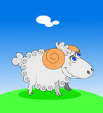 Piccolo agnello illustrazione di stock