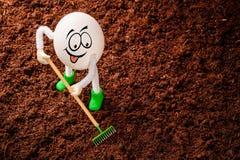 Piccolo agricoltore dell'uovo con il rastrello miniatura che rema il suolo Immagine Stock Libera da Diritti