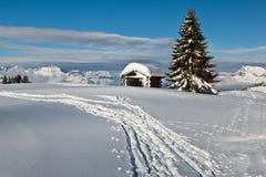 Piccolo albero di abete e della capanna in alpi francesi Immagine Stock