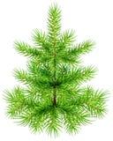 Piccolo albero di abete verde del pino di Natale royalty illustrazione gratis