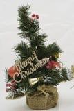 Piccolo albero di Natale Fotografia Stock Libera da Diritti
