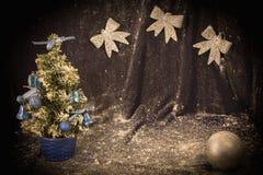Piccolo albero di Natale su fondo per le cartoline ed i saluti Fotografie Stock Libere da Diritti