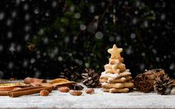 Piccolo albero di Natale di un biscotto del pan di zenzero, fuoco selettivo Fotografia Stock