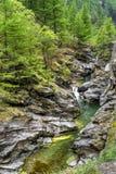 Piccolo Alpine Creek Fotografie Stock