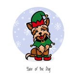 Piccolo assistente Santa dell'Yorkshire terrier illustrazione vettoriale