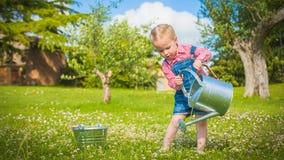 Piccolo assistente sull'erba verde nel giorno di estate rustico Fotografia Stock