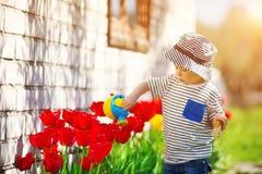 Piccolo bambino che cammina vicino ai tulipani sul letto di fiore nel bello giorno di molla immagini stock