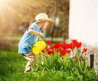 Piccolo bambino che cammina vicino ai tulipani sul letto di fiore nel bello giorno di molla fotografie stock