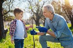 A piccolo bambino del nonno insegnando a come preoccuparsi per la natura fotografia stock libera da diritti