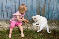 Piccolo bambino divertente che gioca con il gatto bianco all'aperto Fotografia Stock