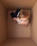Piccolo bambino nella casella Immagini Stock