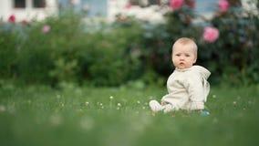 Piccolo bambino sveglio del bambino che gioca nel parco su erba al tempo di giorno archivi video
