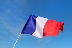 Piccolo bandiera francese Immagini Stock