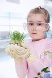 Piccolo biologo Fotografie Stock