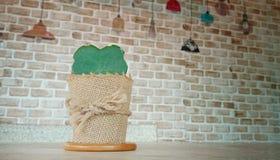 Piccolo cactus in forma di cuore di Hoya fotografia stock libera da diritti