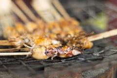 Piccolo calamaro sui bastoni che cucina sopra un fuoco Fotografie Stock