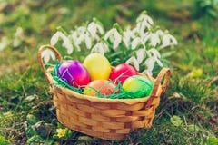 Piccolo canestro in pieno delle uova di Pasqua variopinte Immagini Stock
