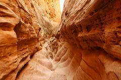Piccolo canyon della scanalatura del cavallo selvaggio immagini stock