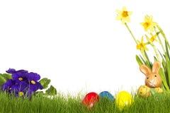 Piccolo coniglietto di pasqua con il daffodil delle uova di Pasqua e P Immagini Stock Libere da Diritti
