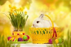 Piccolo coniglio divertente fra la merce nel carrello delle uova di Pasqua Immagine Stock