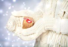 Piccolo contenitore di regalo in mani con i guanti bianchi Immagini Stock Libere da Diritti
