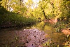 Piccolo corso d'acqua Fotografie Stock