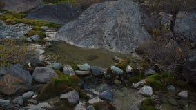 Piccolo corso d'acqua calmo che entra fra le rocce naturali nel Russo Sberia video d archivio