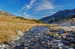 Piccolo corso d'acqua dell'acqua in alte montagne di Tatra Immagine Stock