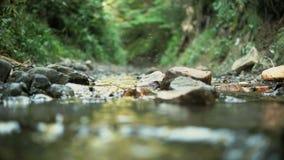 Piccolo corso d'acqua in montagne stock footage