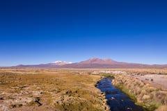 Piccolo corso d'acqua nelle Ande Parco Sajama, Bolivia Immagine Stock