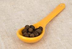 Piccolo cucchiaio giallo con quattro spezie Immagini Stock
