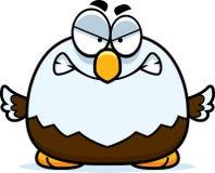 Piccolo Eagle calvo arrabbiato Immagine Stock