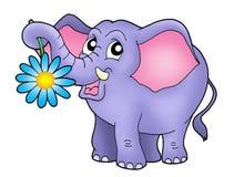 Piccolo elefante con il fiore Fotografia Stock