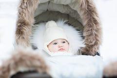 Piccolo fare da baby-sitter dolce in un passeggiatore della pelliccia di inverno Immagini Stock Libere da Diritti