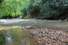 Piccolo fiume Fotografia Stock Libera da Diritti